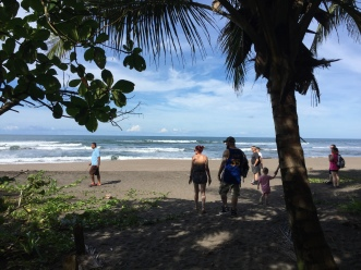 Beach of Tortuguero