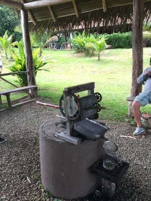 Sugar Cane Press